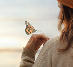 papillon sur une épaule